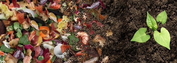 Comment recycler les déchets alimentaires ?