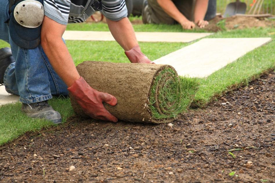 Comment reconnaître un bon jardinier paysagiste?